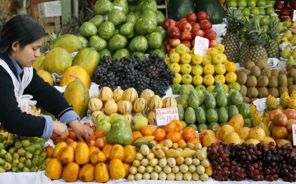 Variedad de Frutas Frescas para Hogares y Empresas