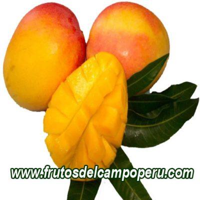 Mango Edward 1 kg