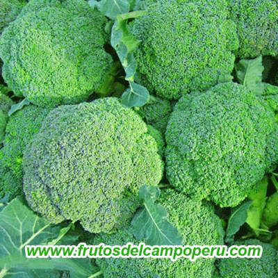 Brocoli Fresca 1 kg
